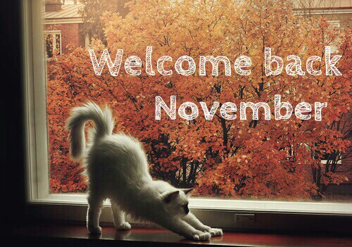 http://newteknoes.com/wp-content/uploads/2016/10/dp-bbm-lucu-welcome-back-november.jpg
